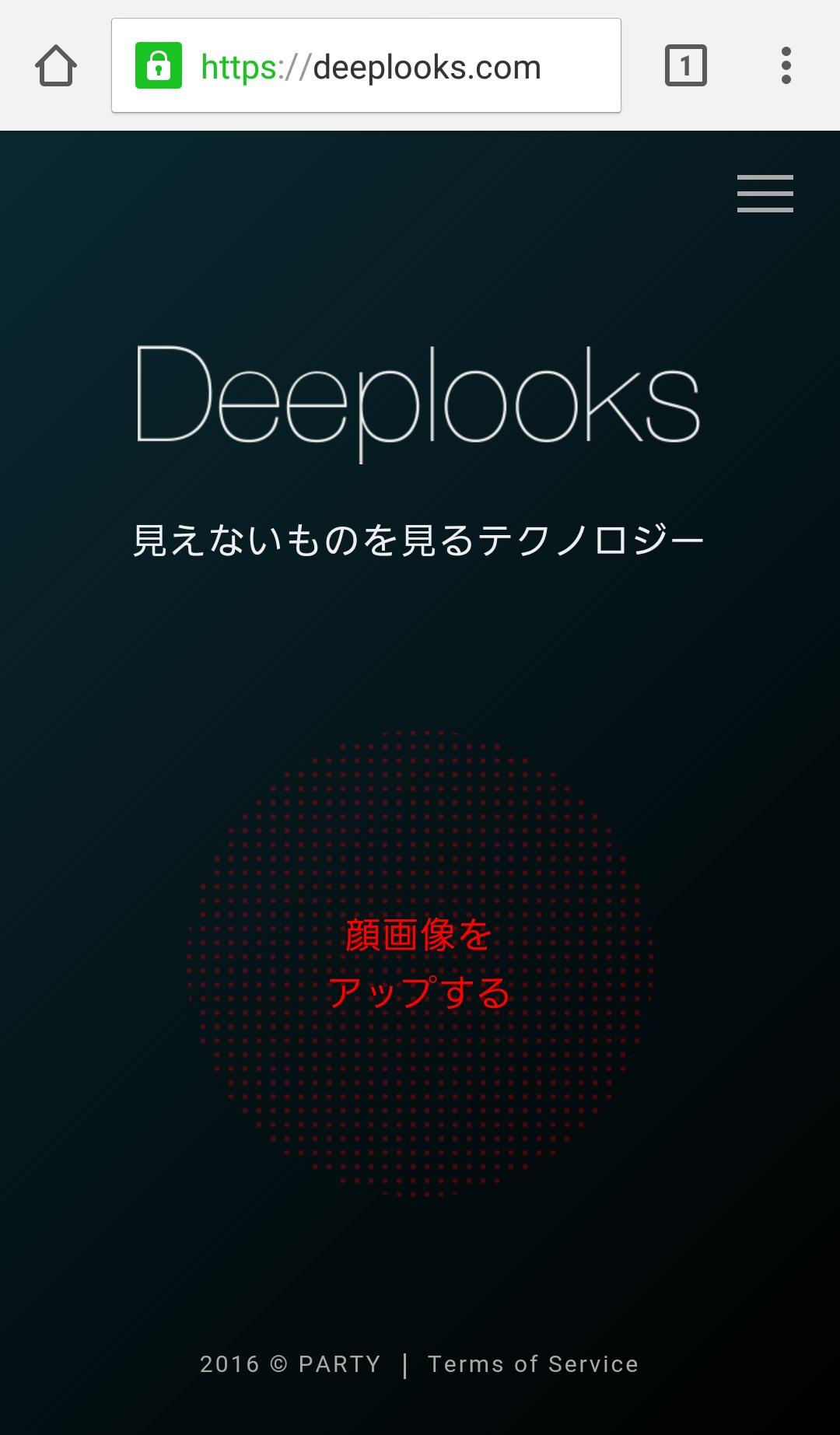 Deeplooks2