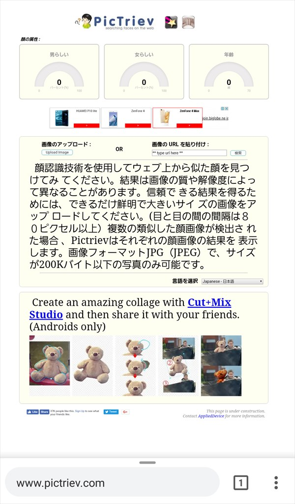 pictriev,-顔検索エンジン1